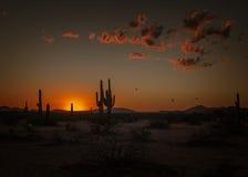 Arizona Sunset. The sun sets on the Arizona desert royalty free stock photography