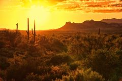 Arizona sunset royalty free stock photography
