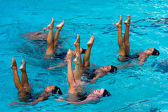 Arizona Synchronized. Event:  2011 U.S. Open Synchronized Swimming Championships, 13.VII.11 Stock Photos