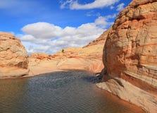 Arizona/Utah: Coyotebuttes - Bizarre Zandsteenwoestijn na Regen Royalty-vrije Stock Foto's