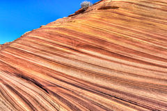 Arizona-Vermillion Cliffs Wilderness-North Coyote Buttes-The Wave Stock Photos