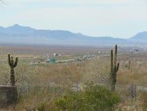 Arizona-Wüste lizenzfreies stockfoto