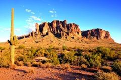 Arizona-Wüste Stockbilder
