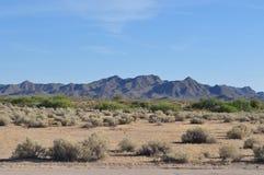Arizona-Wüste Stockfoto