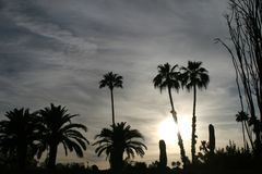 Arizona-Wüste an der Dämmerung lizenzfreie stockfotografie