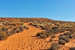 Arizona-Wüste szenisch stockbild