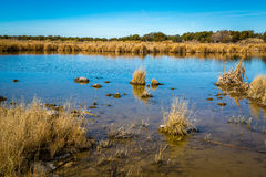 Arizona wetlands and animal riparian preserve. Stock Image