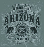Arizona wild horse  rodeo Stock Images