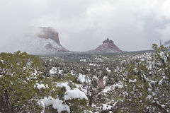 Arizona Winter Landscape Royalty Free Stock Images
