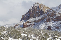Arizona Winter Landscape Royalty Free Stock Photography