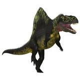 Arizonasaurus na bielu Obraz Stock