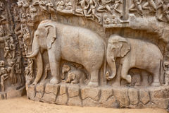 Arjuna's Penance Monolith. Portion of the Arjuna's Penance (or Descent of the Ganges) bas-relief in Mahabalipuram, India Stock Images