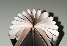 Ark av böcker som lagras i formen av en fan Arkivfoto