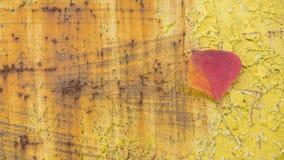 Ark av den gamla scrachväggen med orange sidor royaltyfria bilder