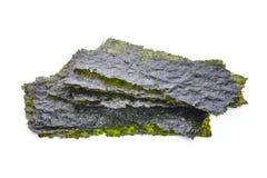 Ark av torkad havsväxt, frasig havsväxt som isoleras på vit royaltyfri bild