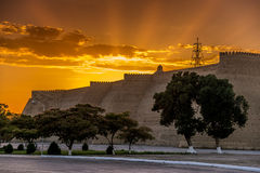 Ark Fortress in Bukhara at sunset Royalty Free Stock Images