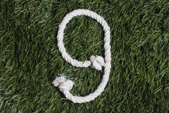 Arkan liczby na trawie Liczba 9 Zdjęcie Stock
