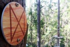 Arkana park w sosnowym lasowym arkana śladzie dla przejścia przy wzrostem Zdjęcie Stock