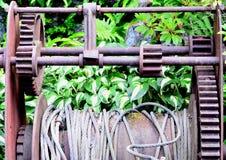 Arkana w parku Fotografia Stock