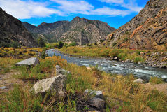 Arkansas River. Flows through the mighty Colorado mountains Stock Photography