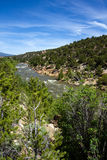 Arkansas River in Colorado Royalty Free Stock Photos