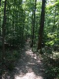 Arkansas Trails Royalty Free Stock Images