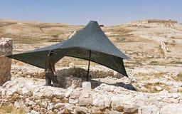 Arkeolog Working på telefon Arad royaltyfri foto
