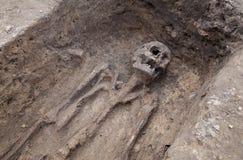 Arkeologisk utgrävning med skelett Royaltyfria Foton