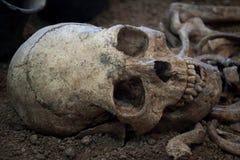 Arkeologiska utgrävningar av en forntida mänsklig skelett- och människaskalle arkivfoto