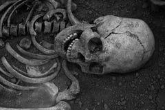 Arkeologiska utgrävningar av en forntida mänsklig skelett- och människaskalle royaltyfri fotografi