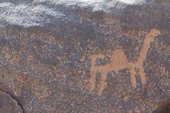 Arkeologiskt och grafitti på stenar royaltyfri bild
