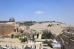 Arkeologiskt parkera, al-Aqsa, monteringsoliv Arkivbild