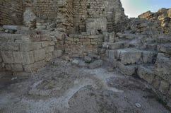 Arkeologiskt parkera av Caesarea Royaltyfri Bild