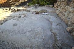 Arkeologiskt parkera av Caesarea Fotografering för Bildbyråer