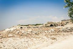 Arkeologiskt parkera, vaggar nära grekisk teater av Syracuse, fördärvar av fornminnet, Sicilien, Italien arkivfoto