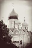 Arkhangels kościół. Moskwa Kremlin. Fotografia Royalty Free