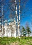 arkhangelsk εκκλησία ορθόδοξη Στοκ εικόνες με δικαίωμα ελεύθερης χρήσης