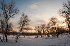 Arkhangelskoye, Μόσχα, Ρωσία Στοκ φωτογραφία με δικαίωμα ελεύθερης χρήσης