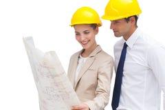 Arkitektlag som ser konstruktionsplan arkivfoto