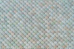 Arkitektonisk Mesh Detail With Fish Scales textur Royaltyfri Fotografi