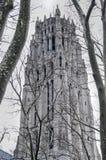 2000 arkitektoniska gotiska carillonkyrkastad inkluderar världen york för stil för status för flodstrand s för landmarken den stö Royaltyfri Fotografi