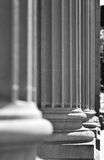 Arkitektoniska kolonner i en klassiska federala Buuilding Royaltyfria Foton