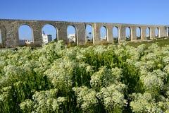 Arkitektur av den gamla akvedukten Royaltyfri Foto