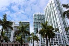 Arkitektur av stadsbyggnader och palmträd Arkivfoto