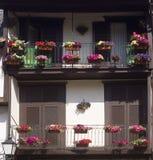 Arkitektur blommar Guimaraes Portugal Arkivbild