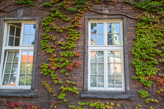 arkitektur Gamla tegelstenvägg och fönster Arkivfoto