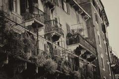 Arkitektur i staden av Verona, Italien Royaltyfri Foto