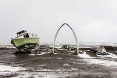 Arktische Ausdehnung lizenzfreie stockbilder