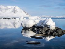 Arktische Landschaft - Eis, Meer, Berge, Gletscher - Spitzbergen, Svalbard Stockfotografie