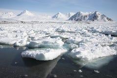 Arktische Landschaft gefrorener Fjord Lizenzfreie Stockbilder